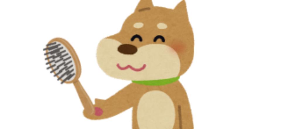 dog_groom
